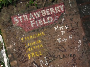 17-7 strawberry field